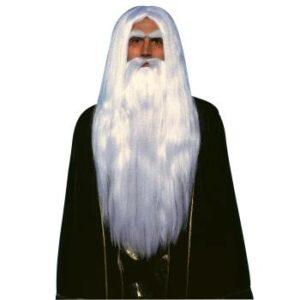 Forum Merlin Wig and Beard Arizona Fun Services Tempe Arizona