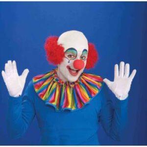 Forum Bald Clown Wig Arizona Fun Services Tempe Arizona