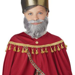 California Costume Wise Man Beard Child Size Arizona Fun Services Tempe Arizona