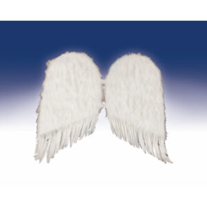 Forum Wings Feather Angel Arizona Fun Services Tempe Arizona