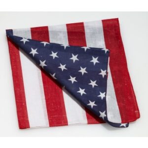Forum American Flag Bandana Arizona Fun Services Tempe Arizona
