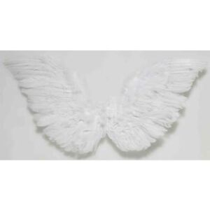 Forum Small Feather Angel Wings Arizona Fun Services Tempe Arizona