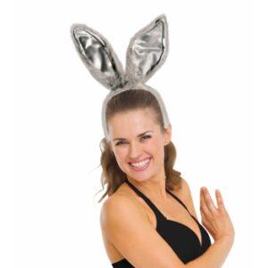 Forum Bunny Ears Gray Arizona Fun Services Tempe Arizona